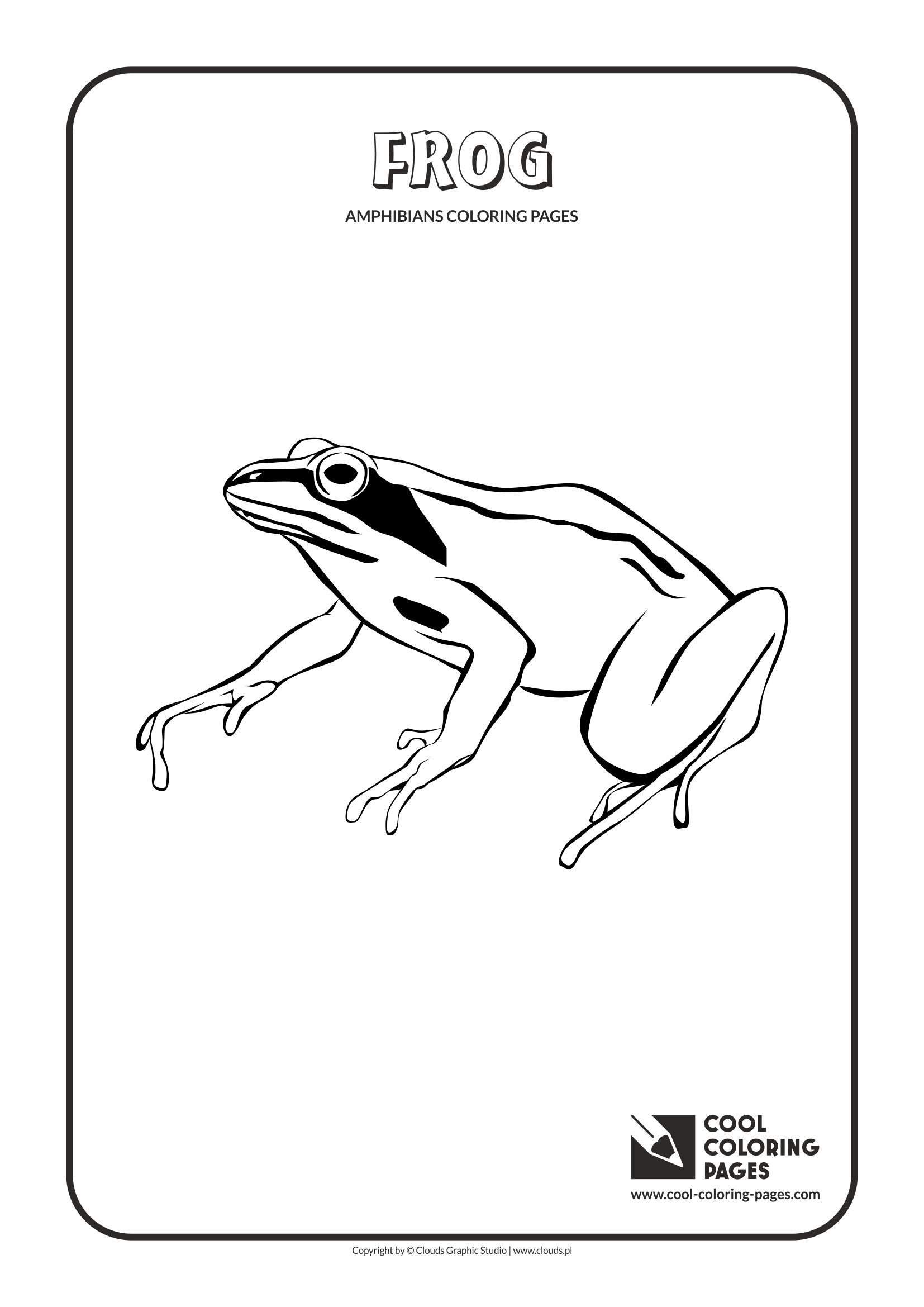 Cool Coloring Pages - Animals / Frog / Coloring page with frog
