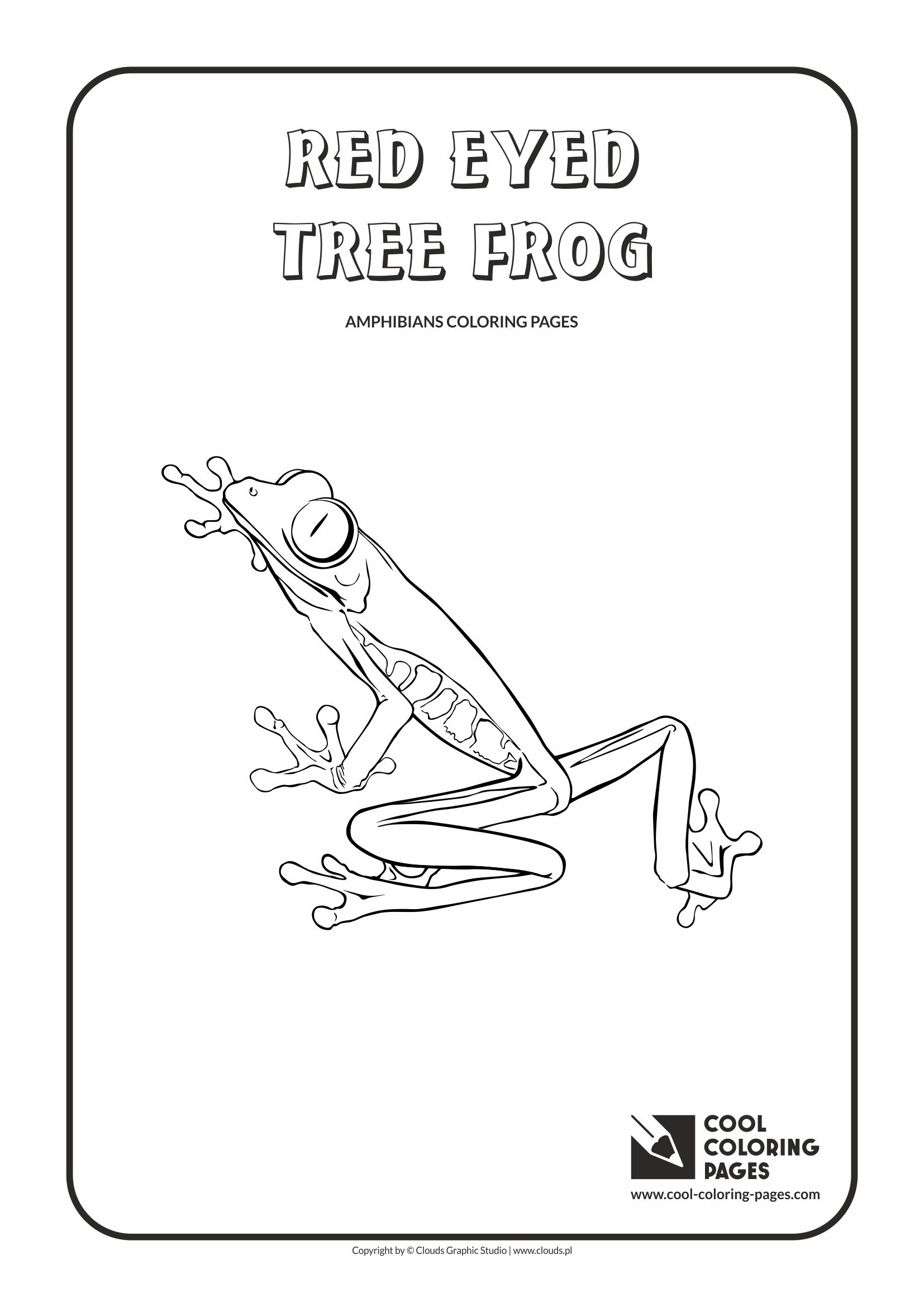 Cool Coloring Pages - Animals / Red eyed tree frog / Coloring page with red eyed tree frog
