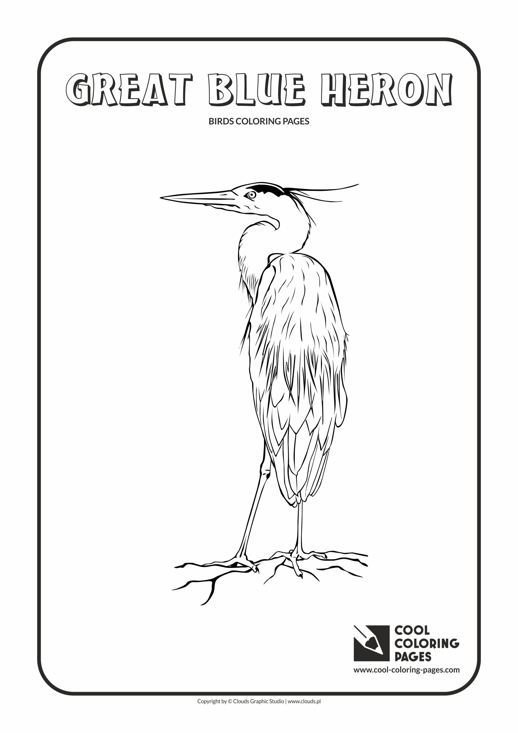 Cool Coloring Pages - Animals / Great blue heron / Coloring page with great blue heron