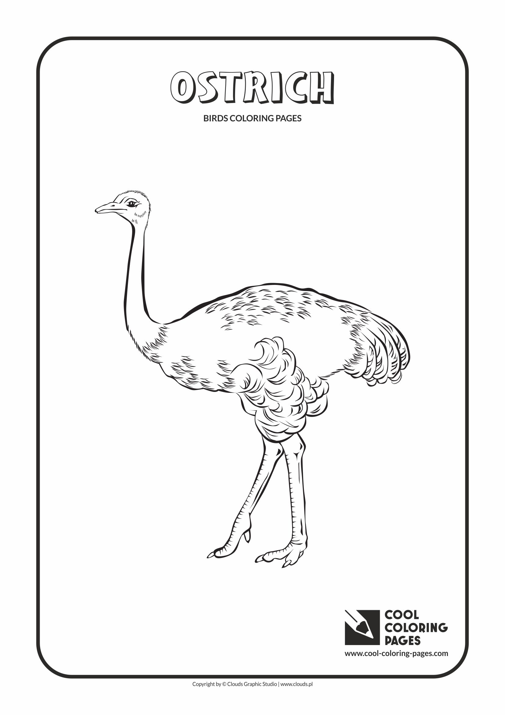 Cool Coloring Pages - Animals / Ostrich / Coloring page with ostrich