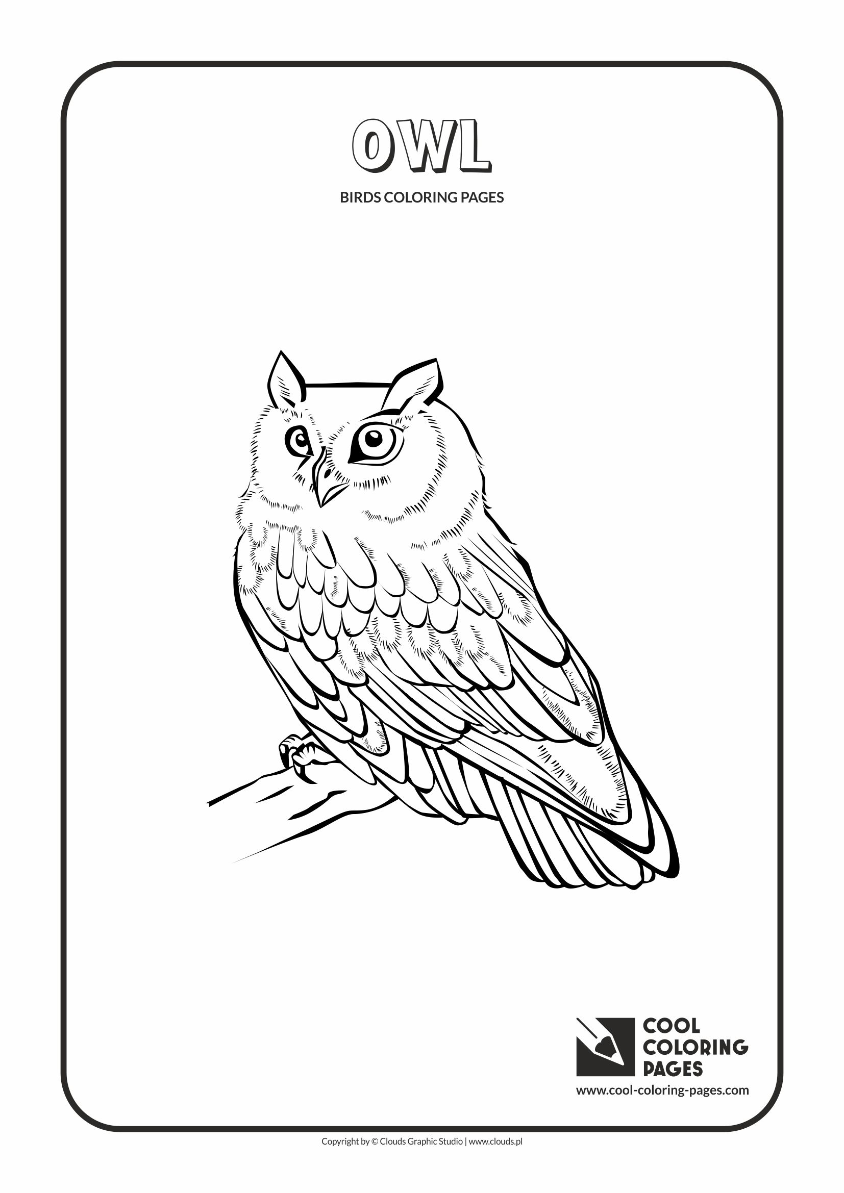 Cool Coloring Pages - Animals / Owl / Coloring page with owl