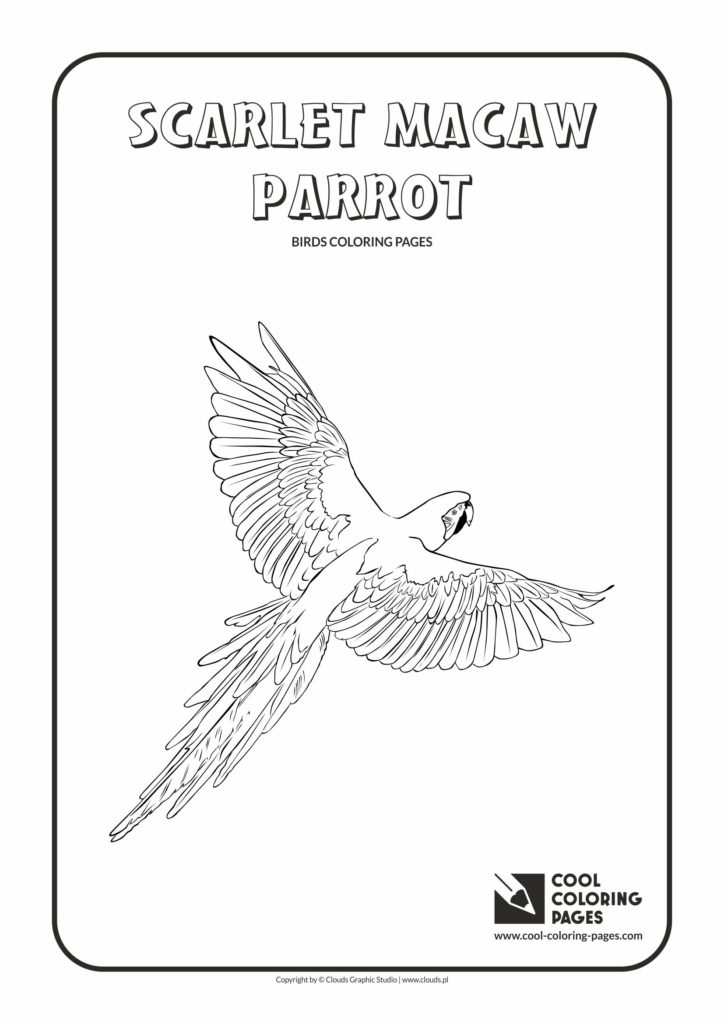 Cool Coloring Pages Scarlet macaw parrot coloring page - Cool ...