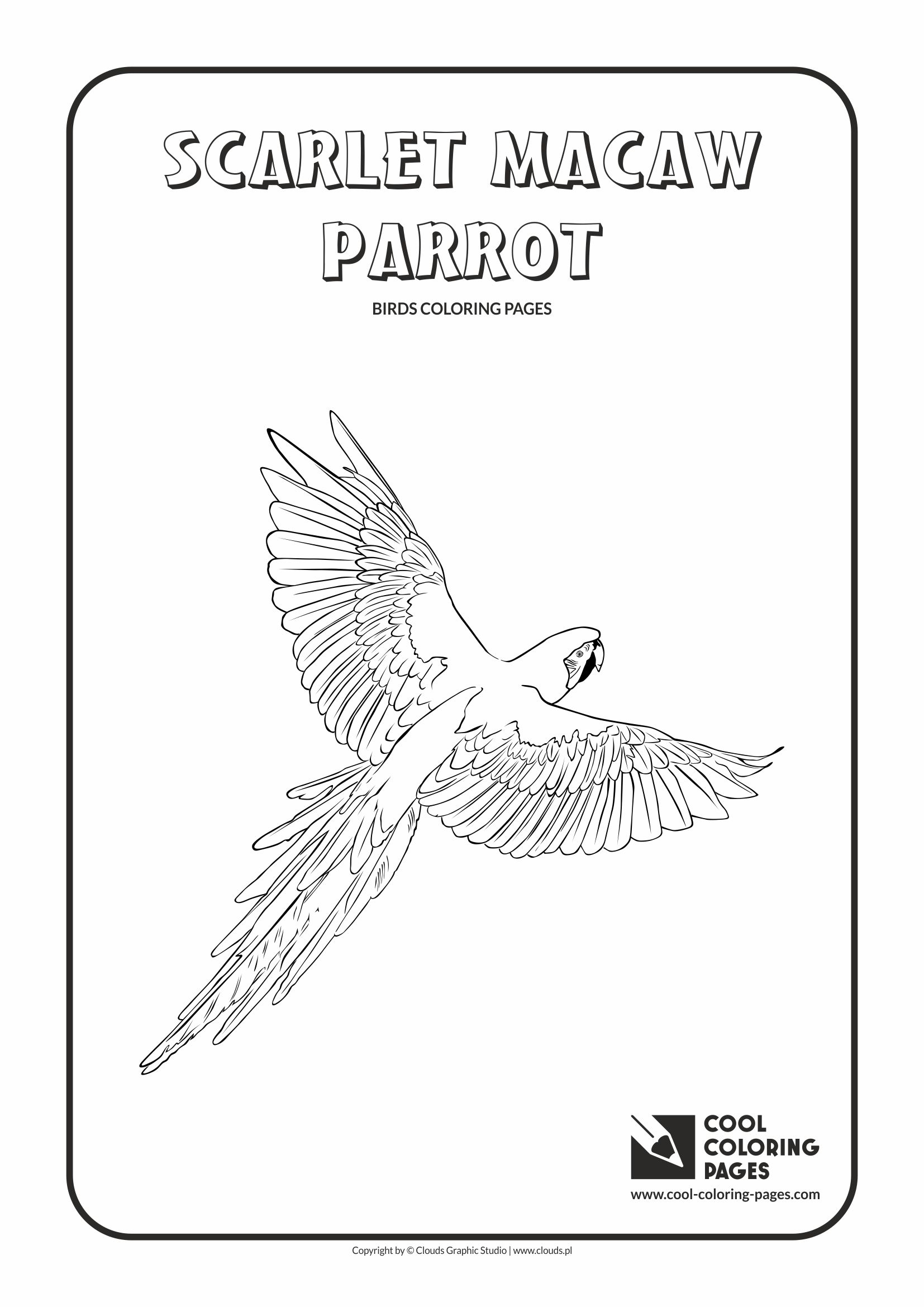 Cool Coloring Pages - Animals / Scarlet macaw parrot / Coloring page with scarlet macaw parrot