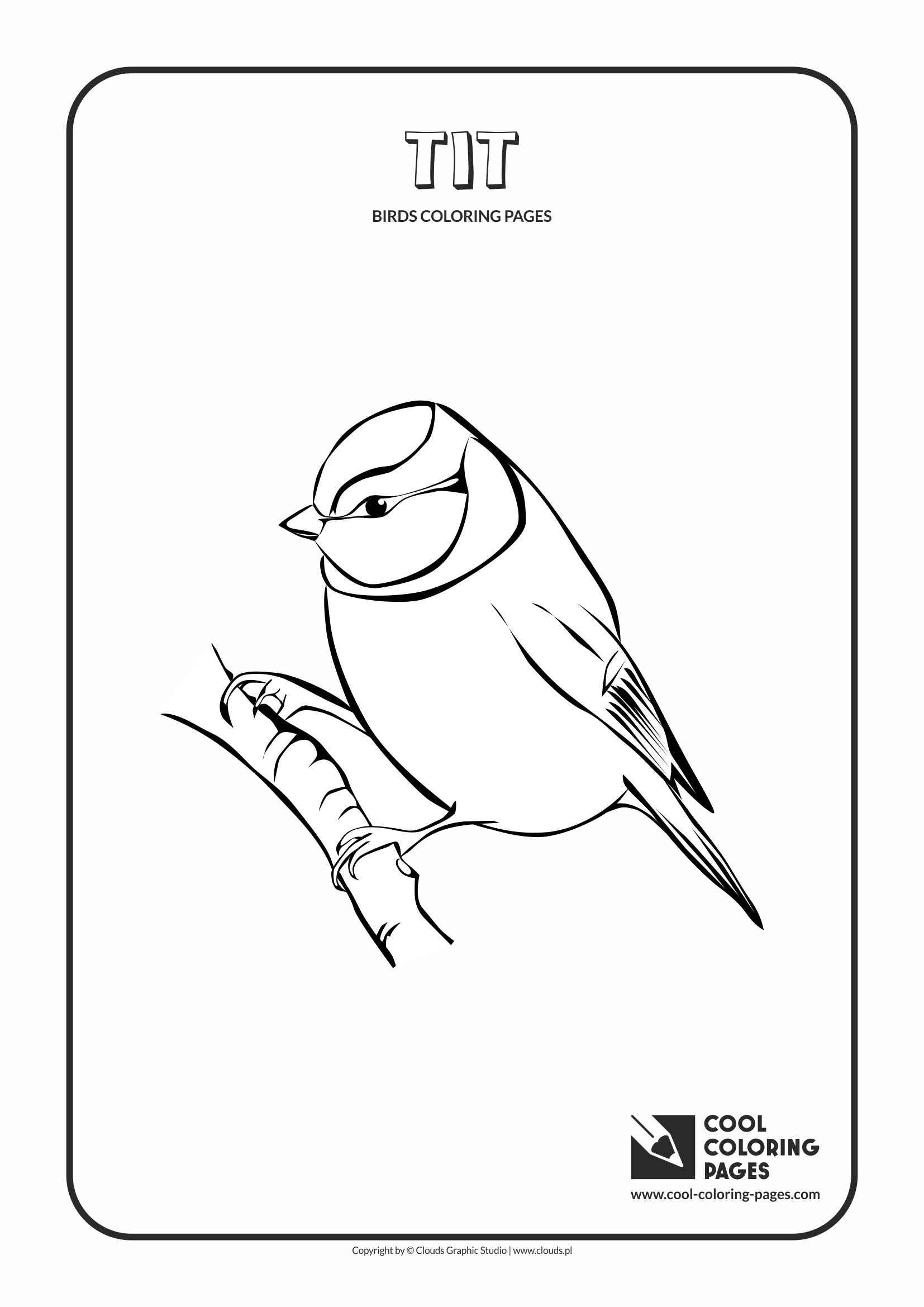 Cool Coloring Pages - Animals / Tit / Coloring page with tit