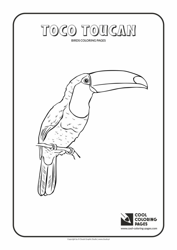 Cool Coloring Pages Toco toucan