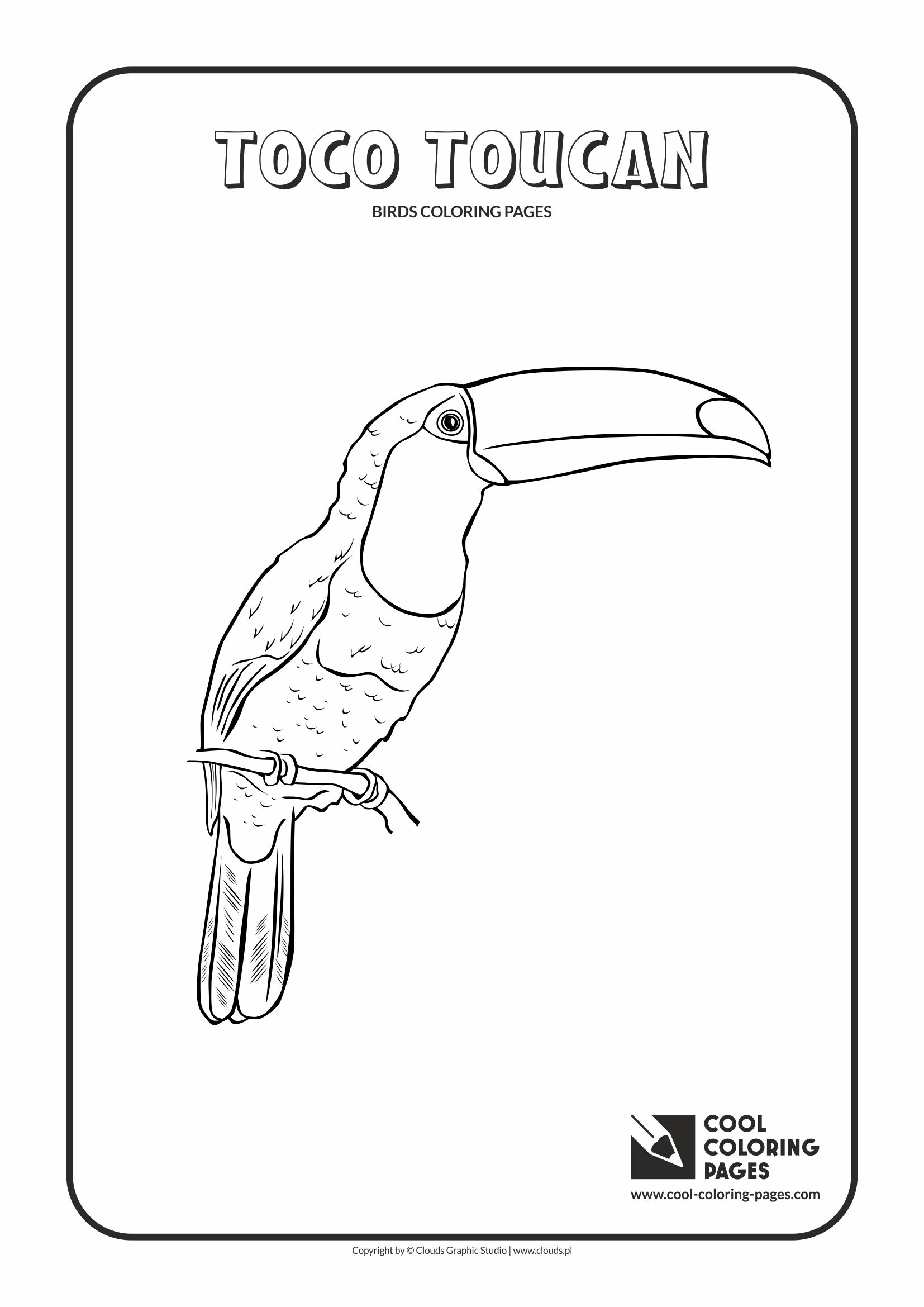 Cool Coloring Pages - Animals / Toco toucan / Coloring page with toco toucan