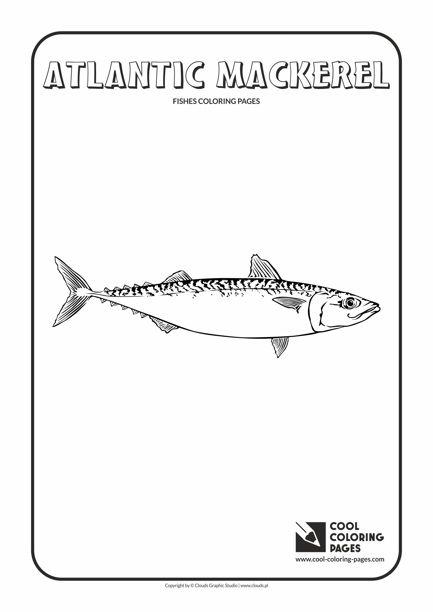 Cool Coloring Pages - Animals / Atlantic mackerel / Coloring page with atlantic mackerel