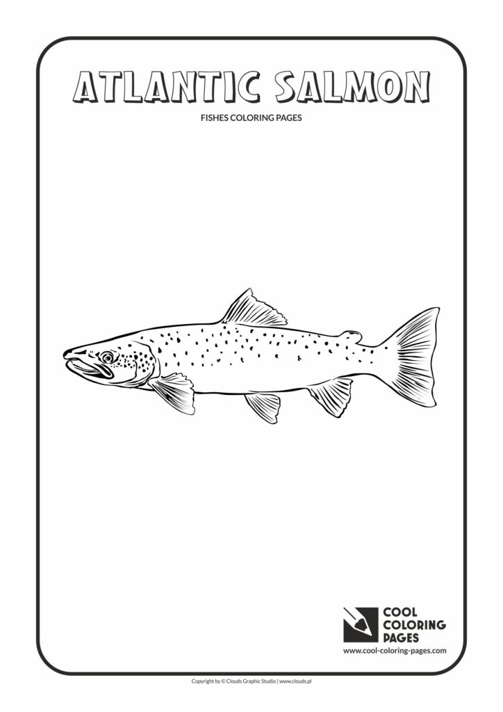 Cool Coloring Pages Atlantic salmon coloring page - Cool Coloring ...