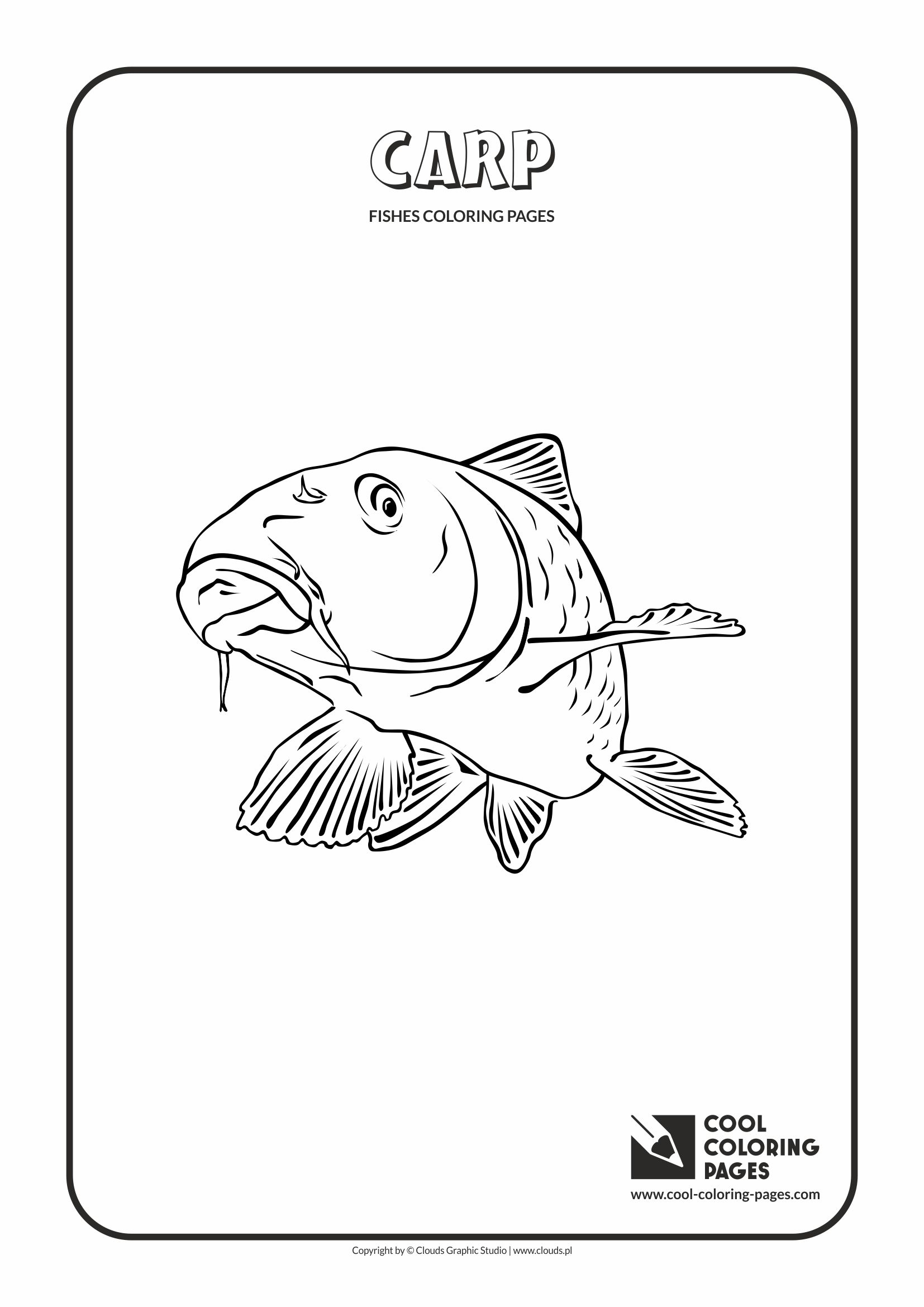 Cool Coloring Pages - Animals / Carp / Coloring page with carp