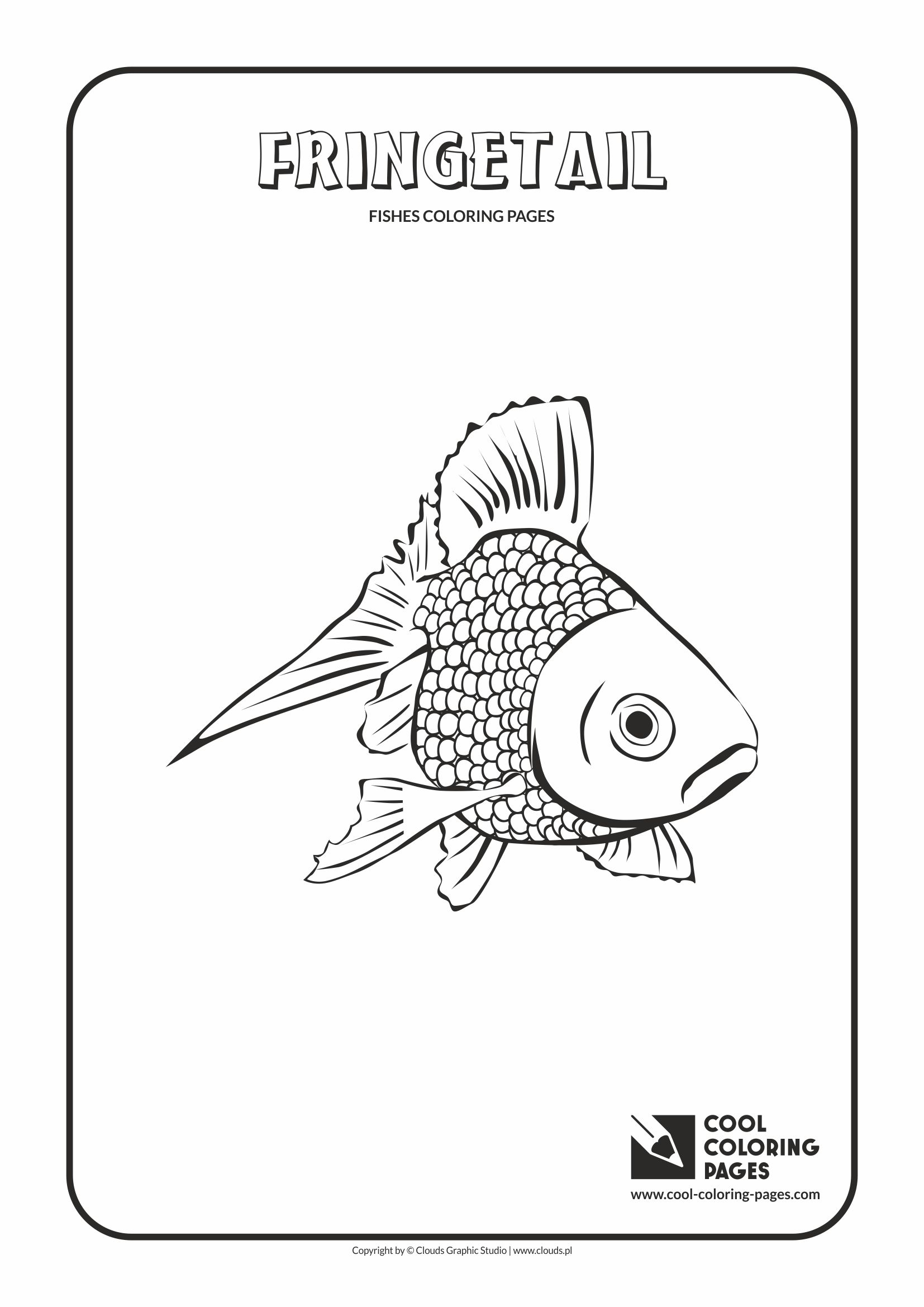 Cool Coloring Pages - Animals / Fringetail / Coloring page with fringetail