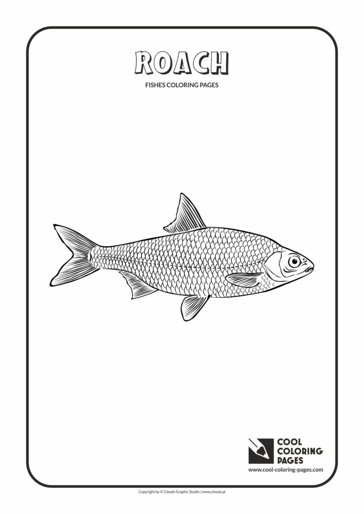 free roach approach coloring pages - photo#32