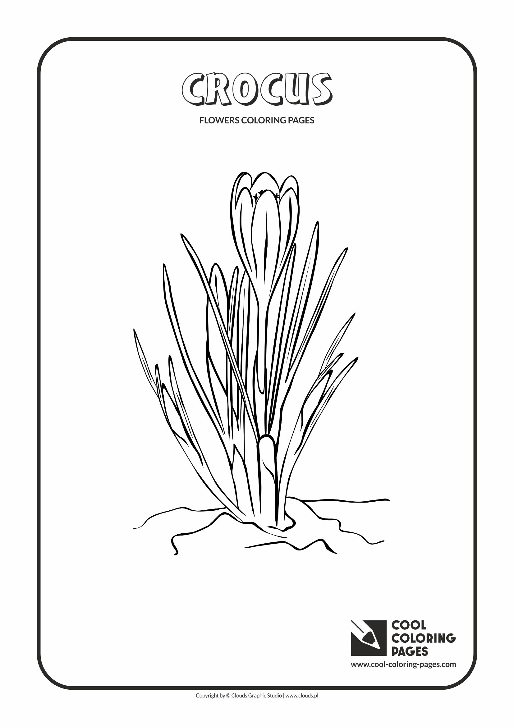 Cool Coloring Pages - Plants / Crocus / Coloring page with crocus