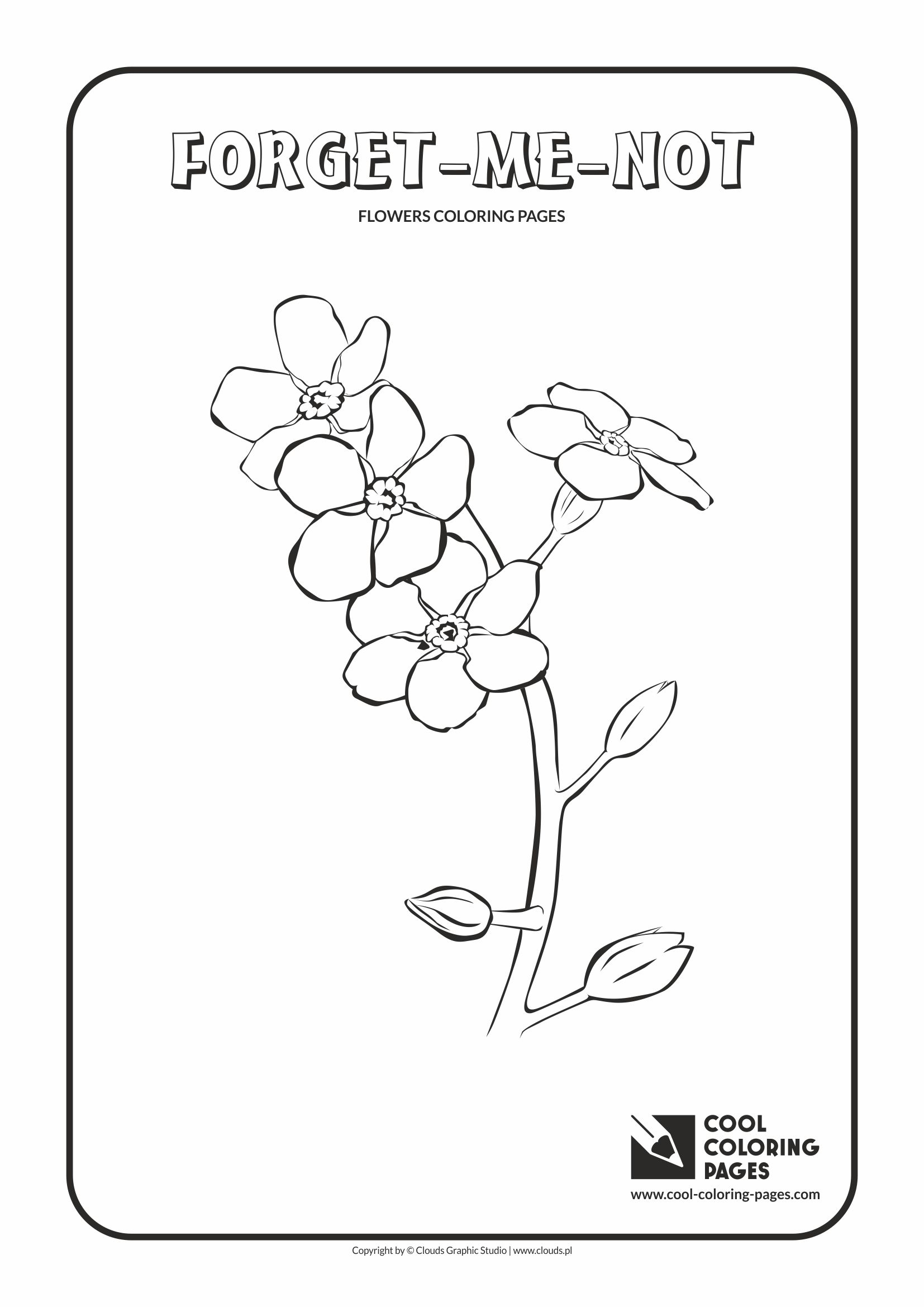 Cool Coloring Pages - Plants / Forget-me-not / Coloring page with forget-me-not