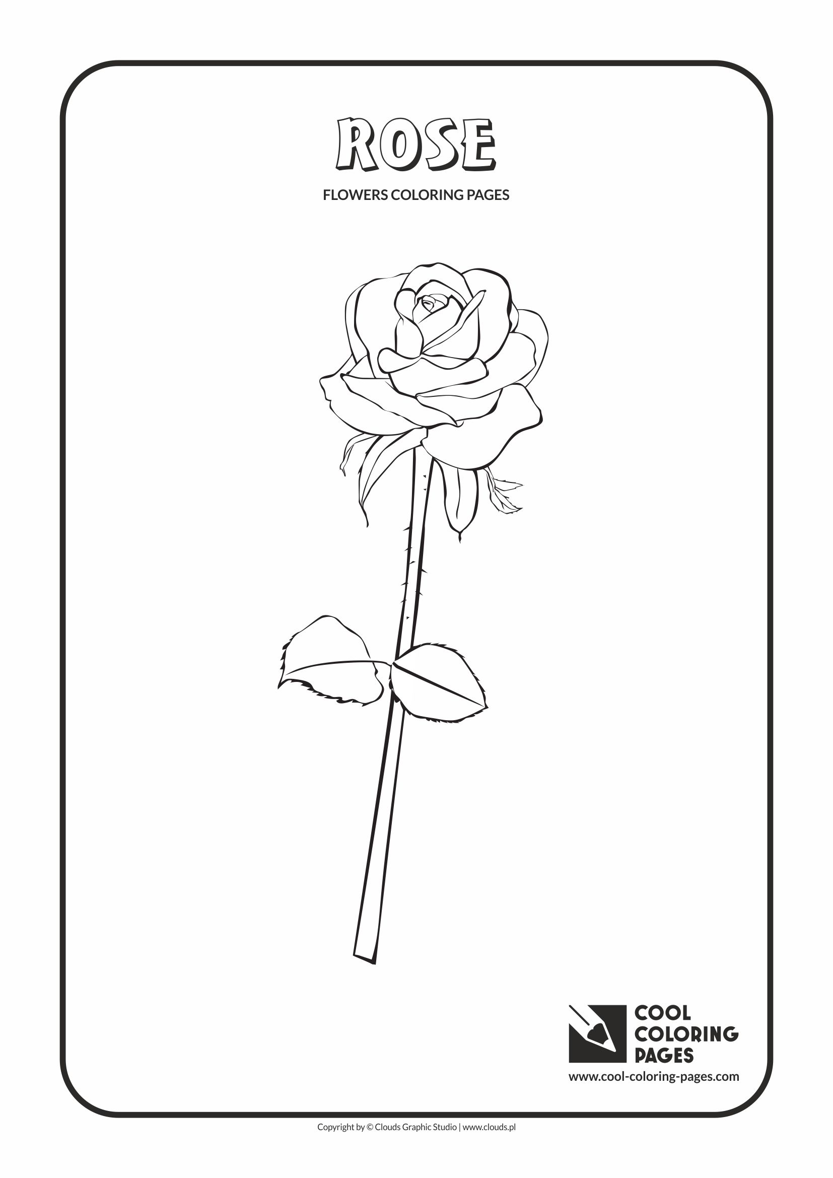 Cool Coloring Pages - Plants / Rose / Coloring page with rose