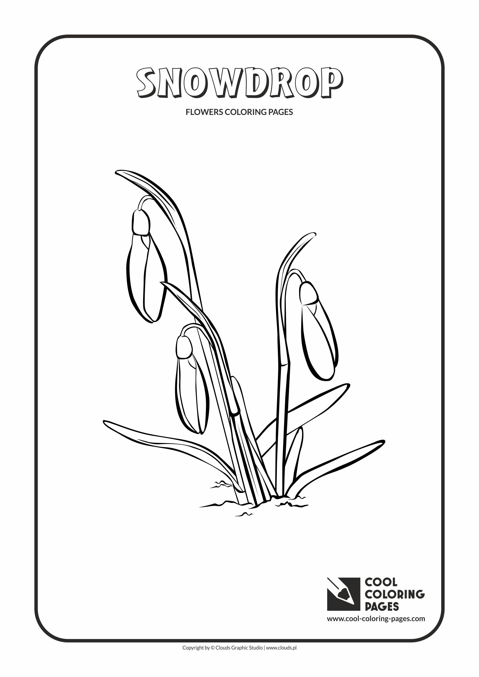 Cool Coloring Pages - Plants / Snowdrop / Coloring page with snowdrop