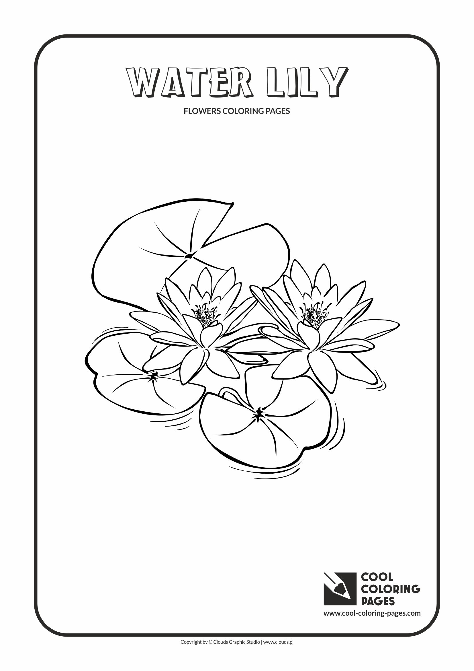 Cool Coloring Pages - Plants / Water lily / Coloring page with water lily