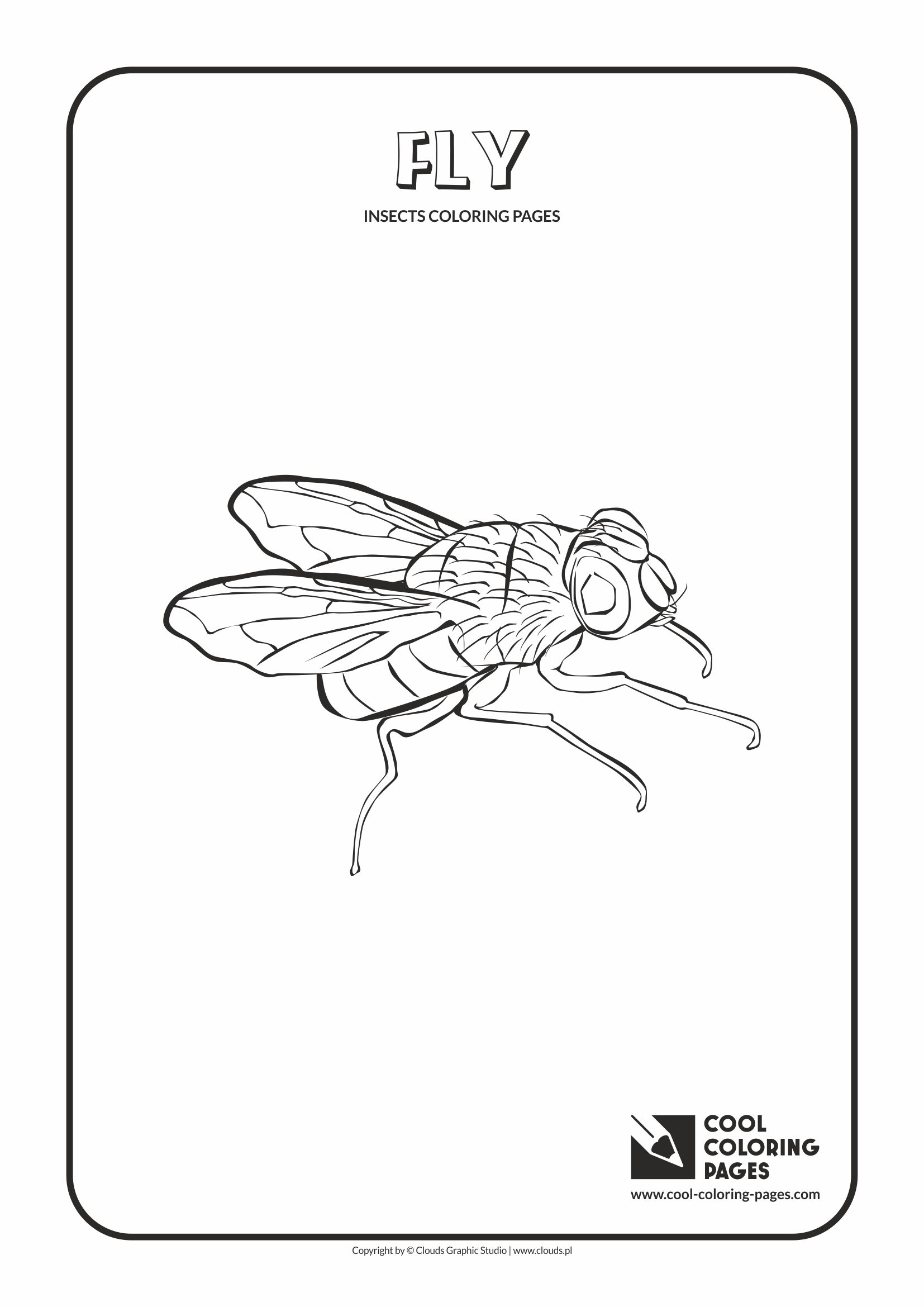 Cool Coloring Pages - Animals / Fly / Coloring page with fly