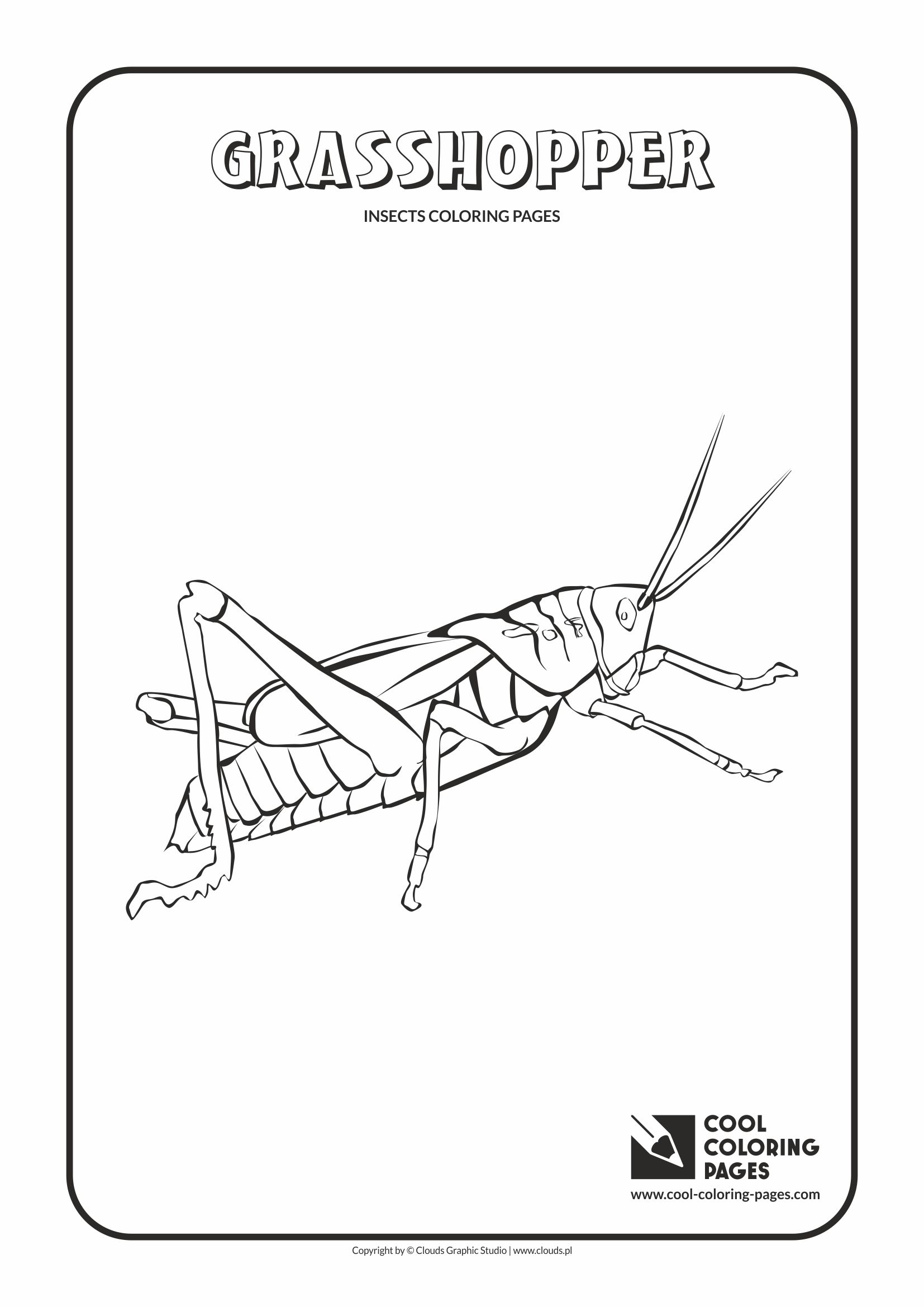 Cool Coloring Pages - Animals / Grasshopper / Coloring page with grasshopper