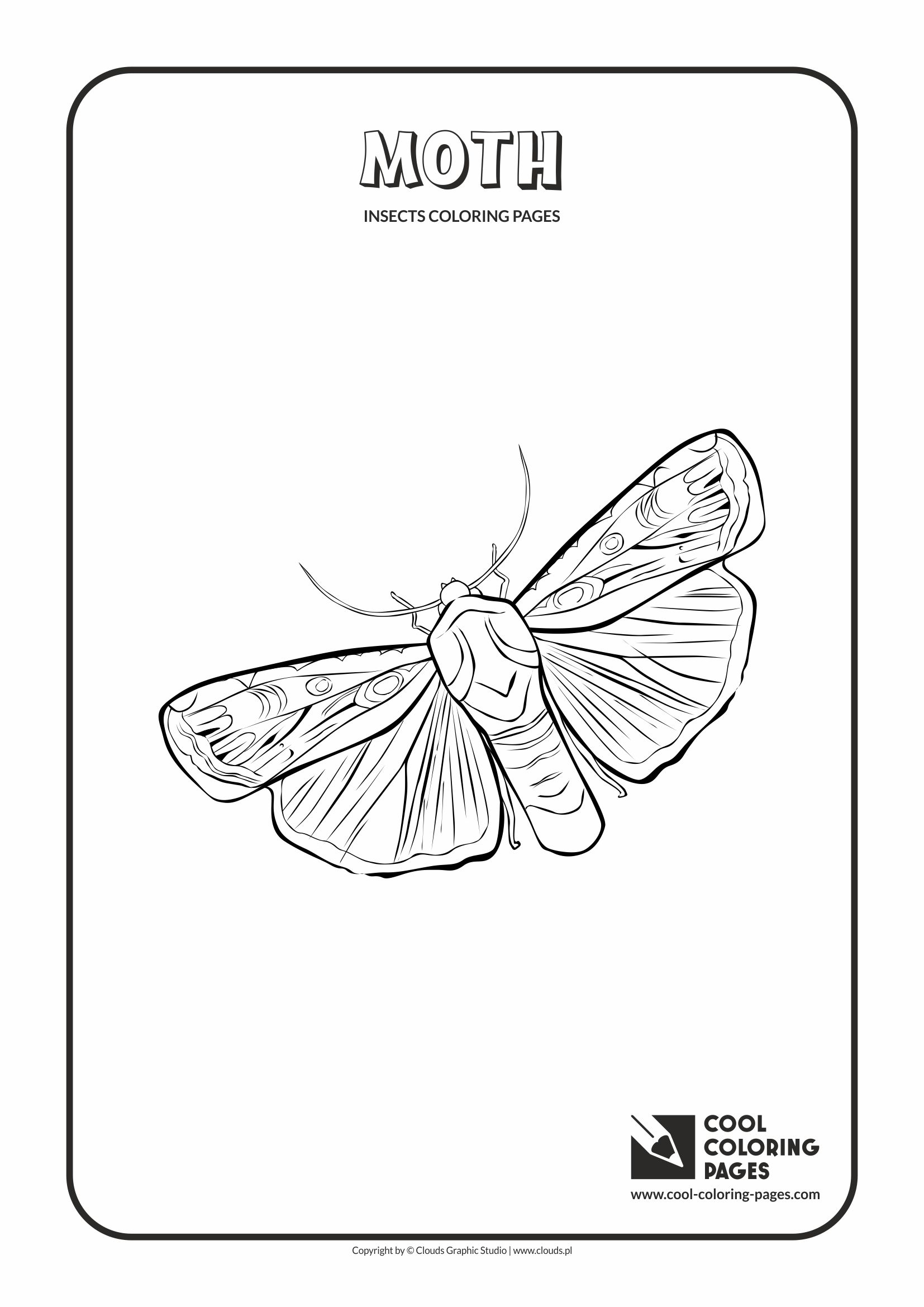 Cool Coloring Pages - Animals / Moth / Coloring page with moth