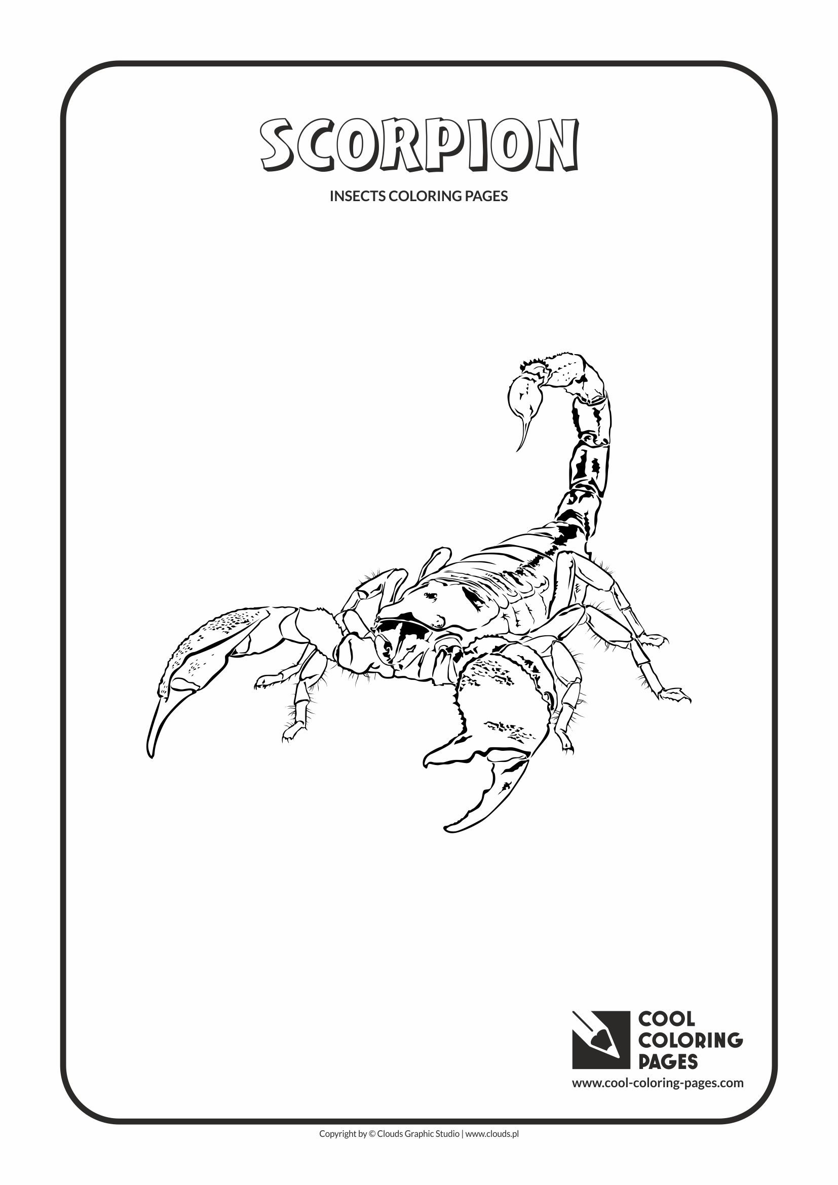 Cool Coloring Pages - Animals / Scorpion / Coloring page with scorpion