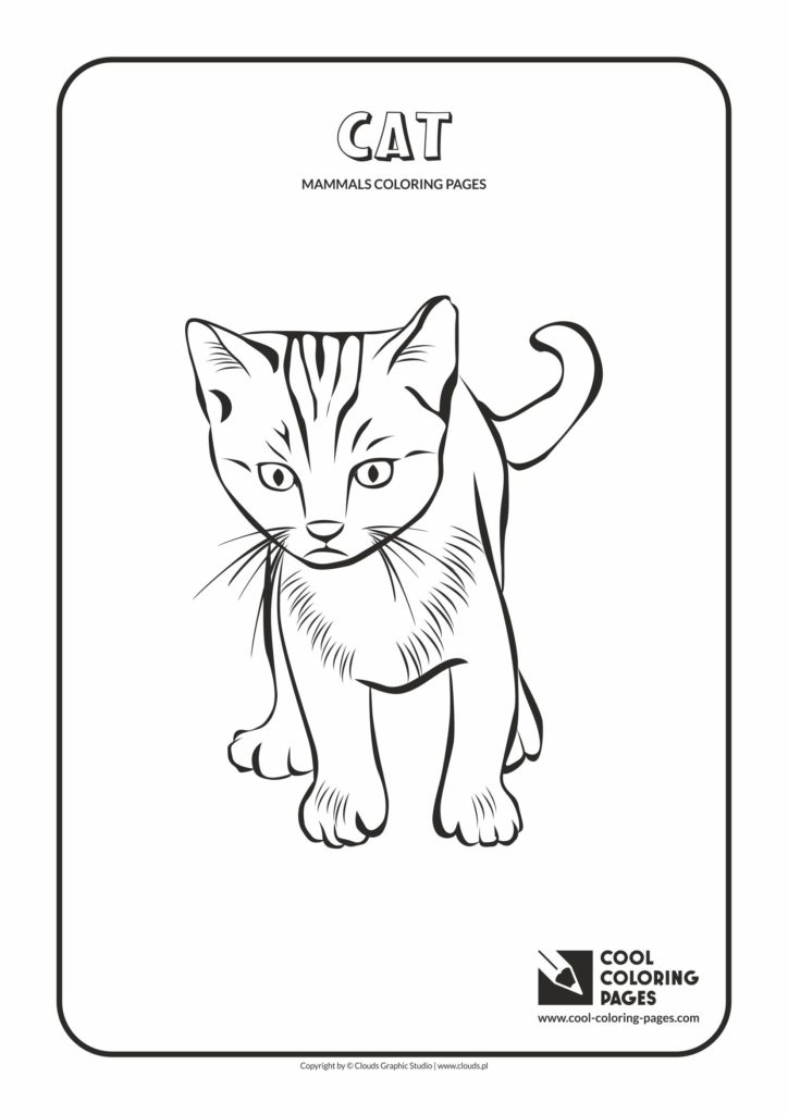 Cool Coloring Pages Cat coloring page - Cool Coloring Pages | Free ...