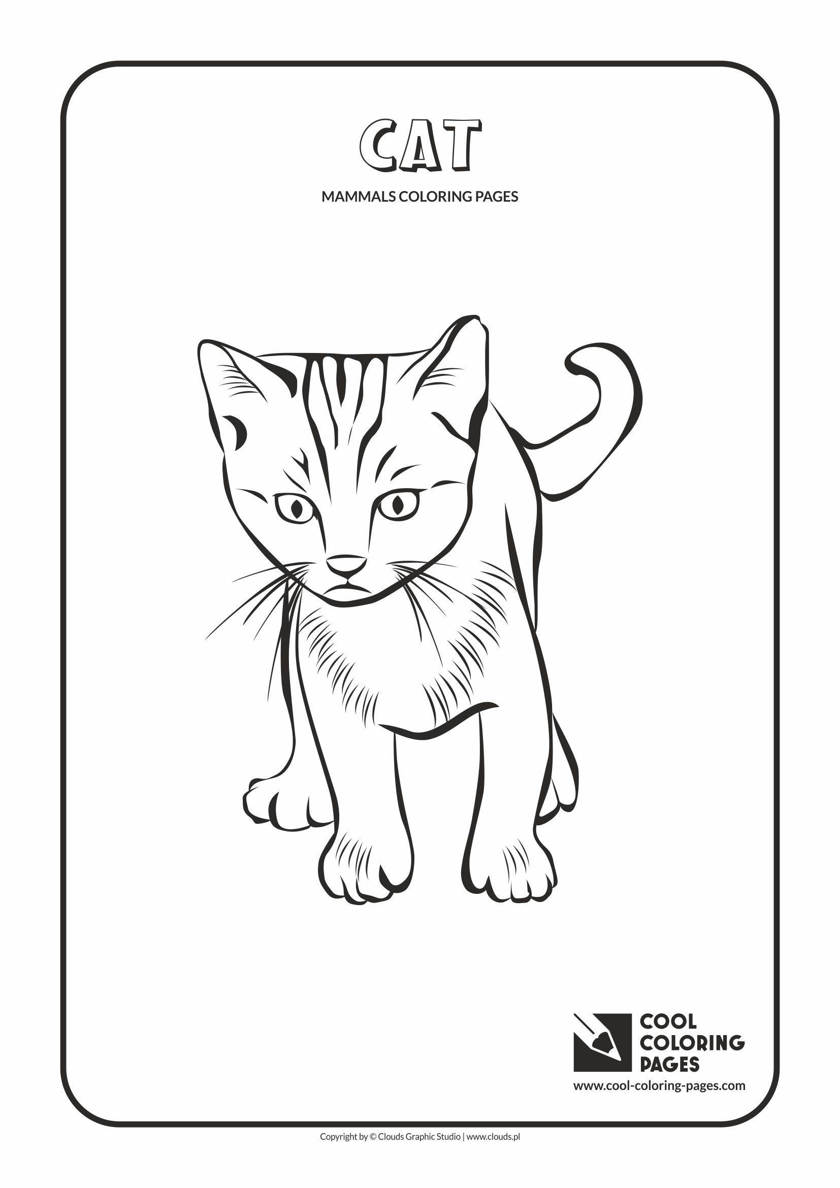 Cool Coloring Pages - Animals / Mammals. Coloring page with cat