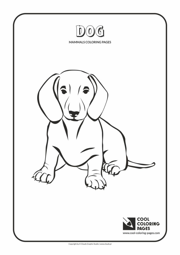 Cool Coloring Pages Dog Coloring Page Cool Coloring