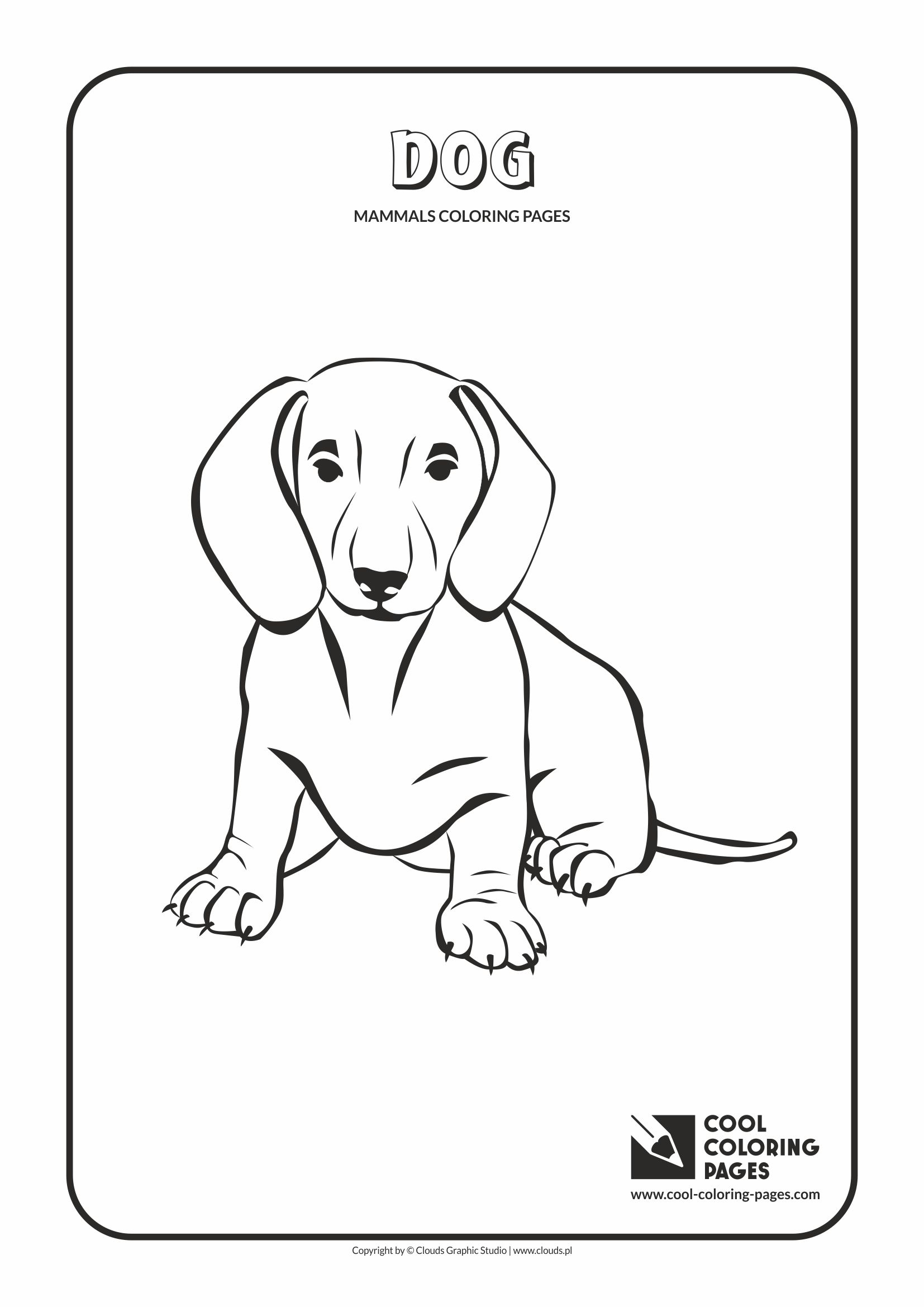 Cool Coloring Pages - Animals / Mammals. Coloring with dog
