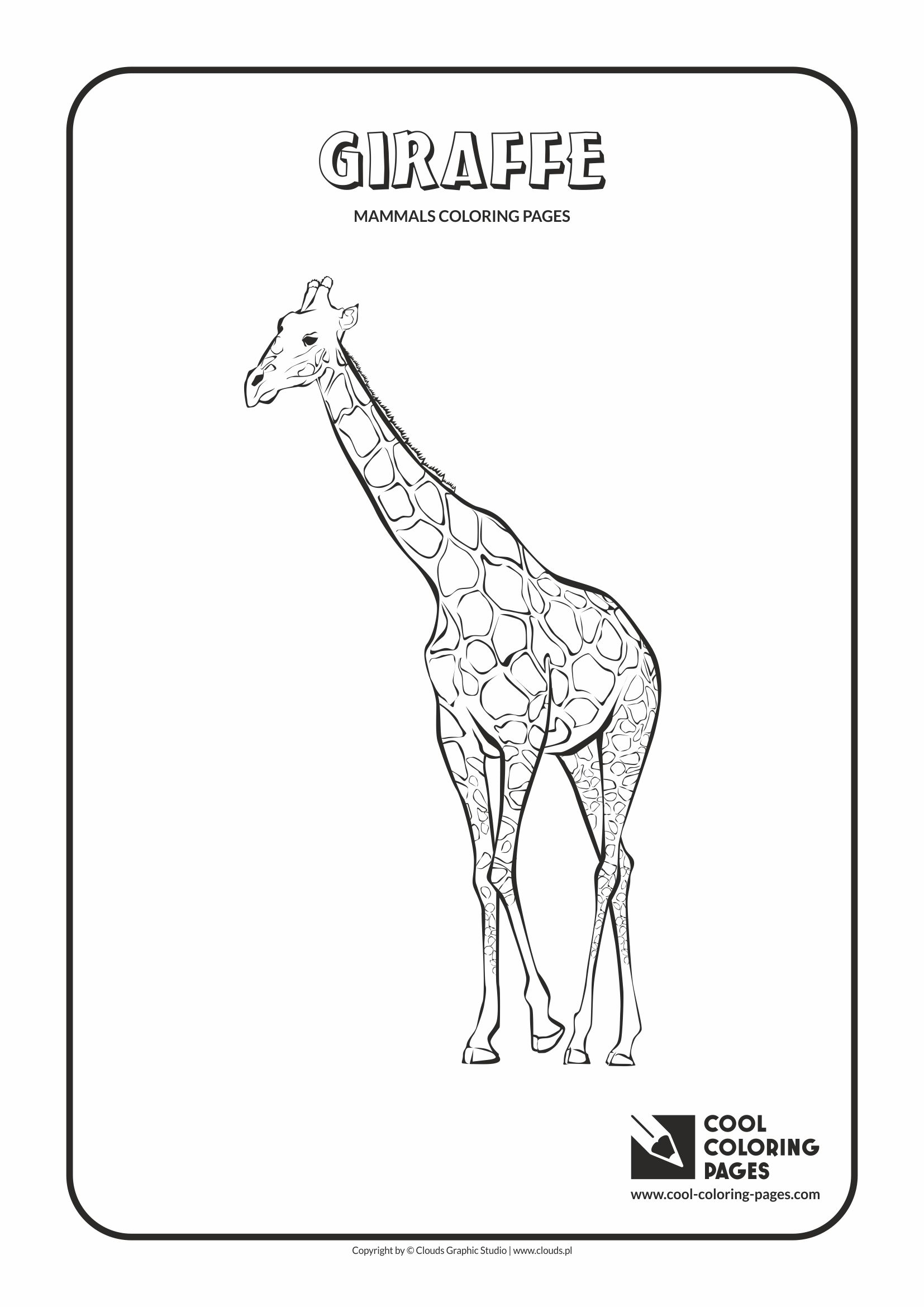 Cool Coloring Pages - Animals / Giraffe / Coloring page with giraffe