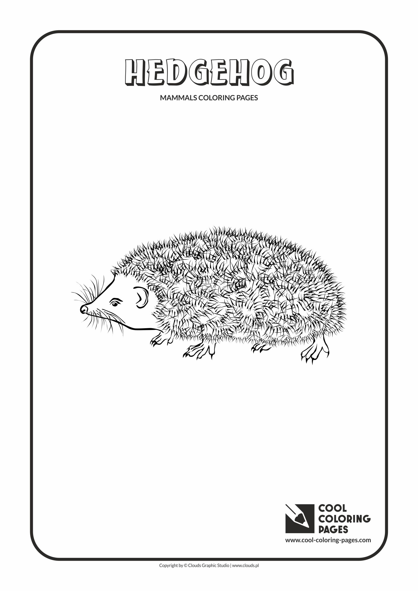 Cool Coloring Pages - Animals / Hedgehog / Coloring page with hedgehog