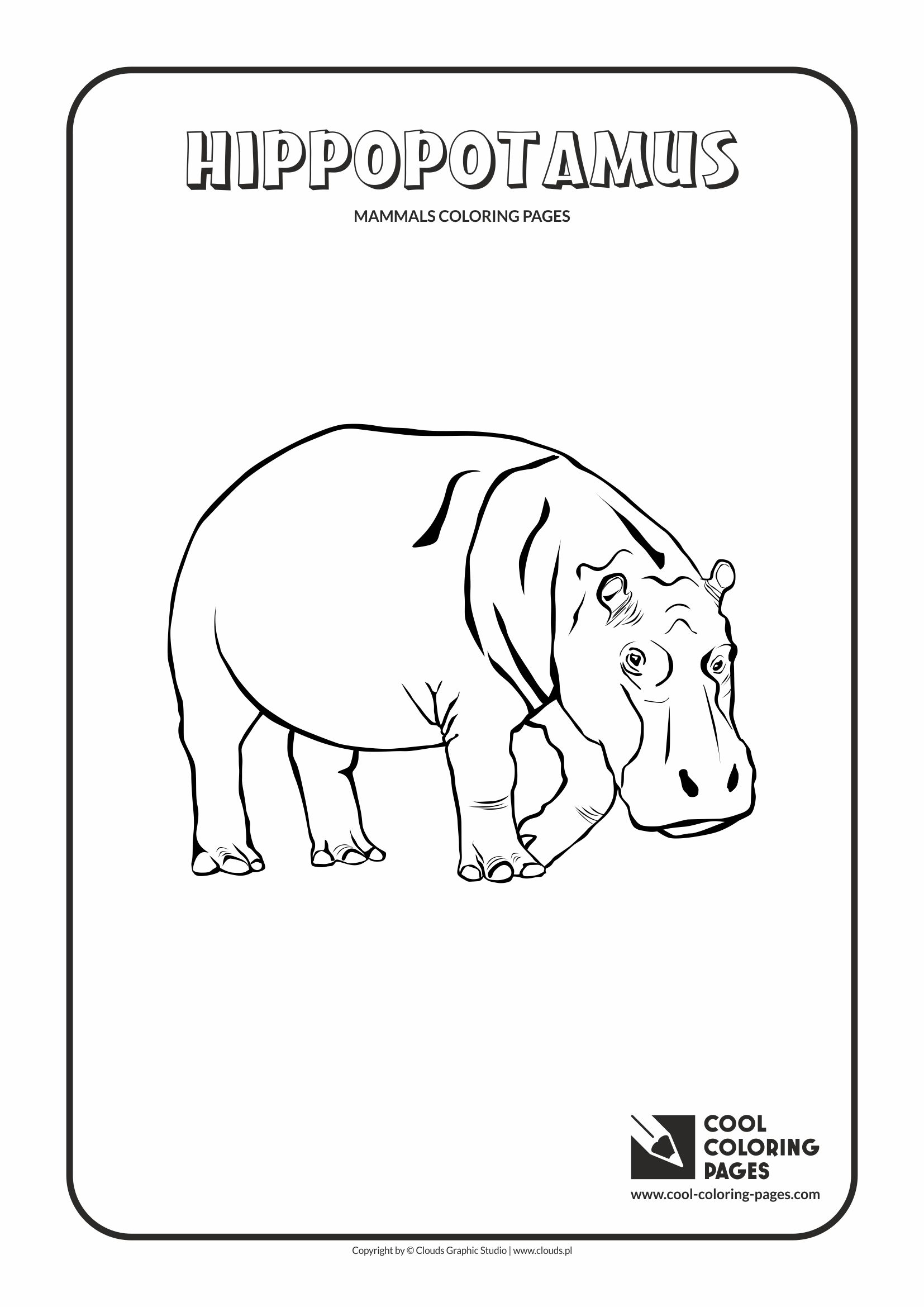 Cool Coloring Pages - Animals / Hippopotamus / Coloring page with hippopotamus