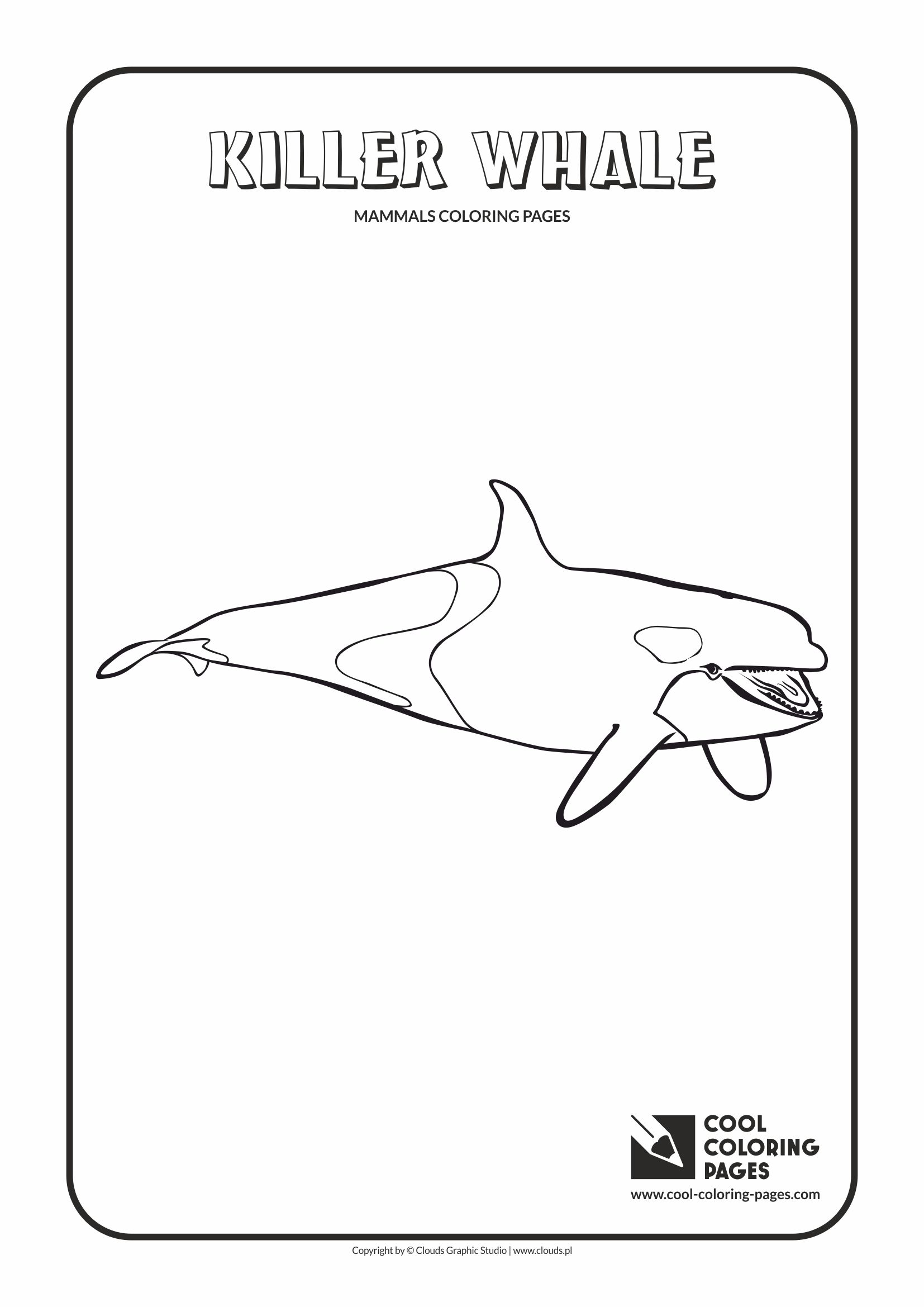Cool Coloring Pages - Animals / Killer whale orca / Coloring page with killer whale orca