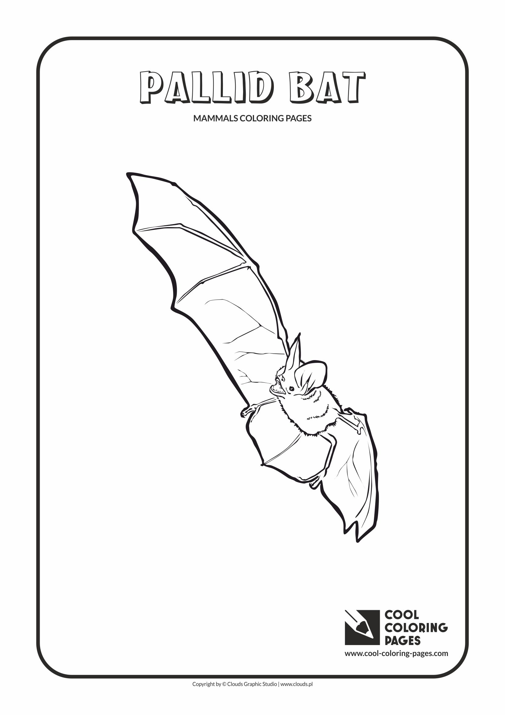 Cool Coloring Pages - Animals / Pallid bat / Coloring page with pallid bat