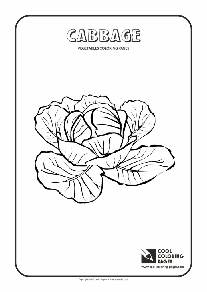 cool coloring pages cabbage coloring page