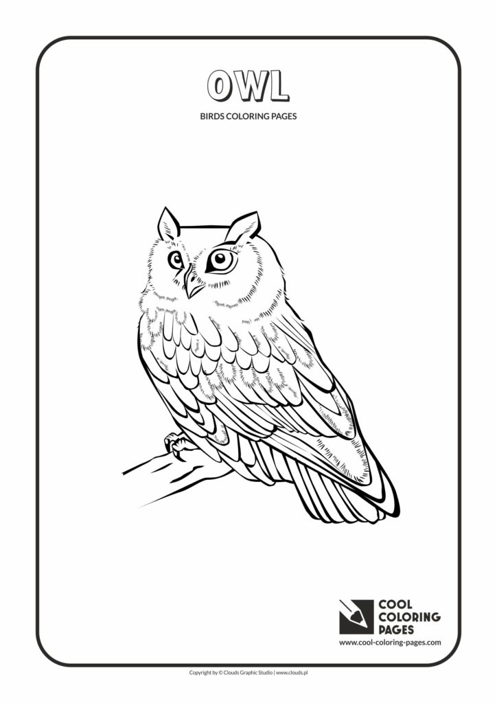 Cool Coloring Pages Owl Coloring Page Cool Coloring