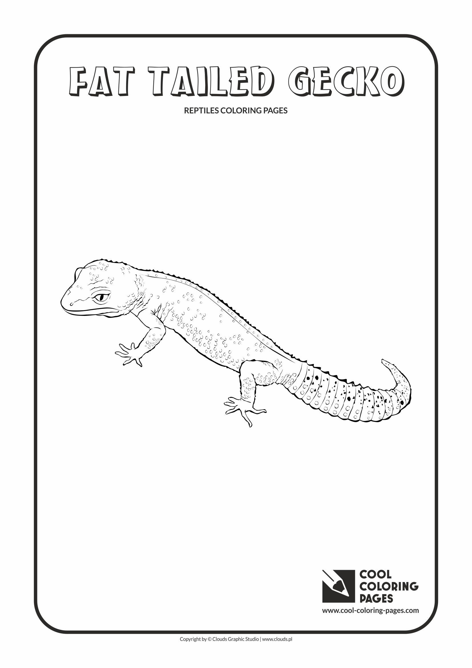Cool Coloring Pages Amphibians
